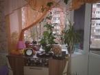 1-комнатная квартира, Ида-Вирумаа, Силламяэ, гагарина 33